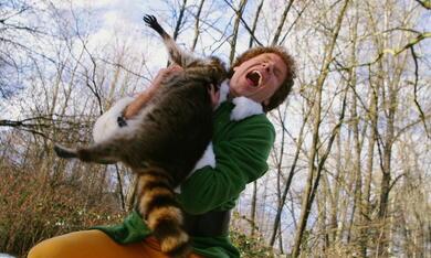 Buddy - Der Weihnachtself mit Will Ferrell - Bild 6