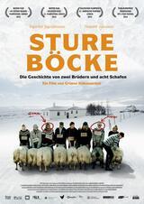 Sture Böcke - Poster