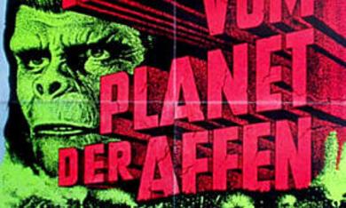 Eroberung vom Planet der Affen - Bild 11