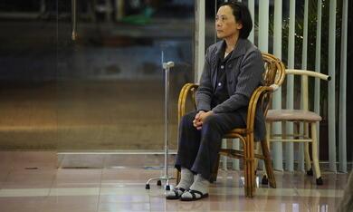 Tao Jie - Ein einfaches Leben - Bild 2