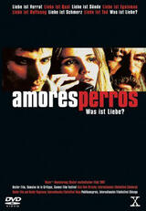 Amores Perros - Poster