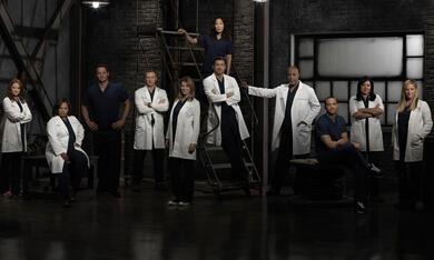 Grey's Anatomy - Die jungen Ärzte - Bild 3