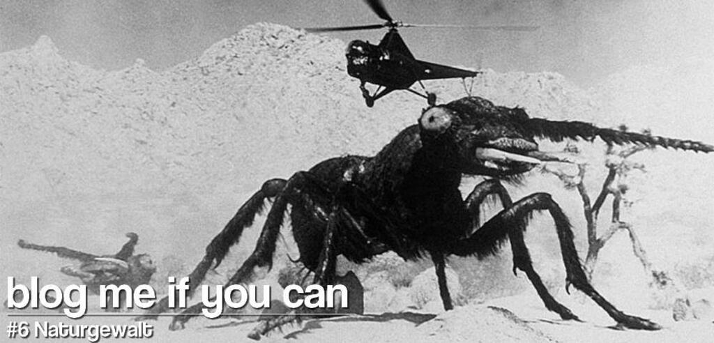 """Selbst das kleinste Tier kann zur Gefahr werden, wie """"Formicula"""" beweist."""