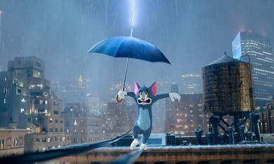 Tom & Jerry - Bild 11
