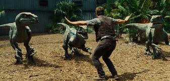 Chris Pratt und seine Raptoren