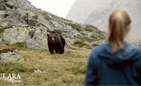 Clara und das Geheimnis der Bären - Bild 4