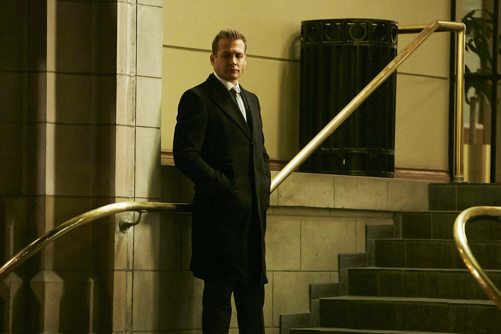 Suits Staffel 6 Serienstream