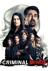 Criminal Minds - Staffel 12 - Poster