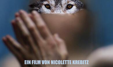 Wild - Bild 1