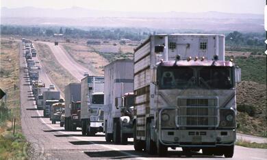 Convoy - Bild 7
