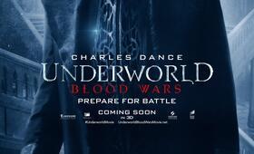 Underworld 5: Blood Wars mit Charles Dance - Bild 31