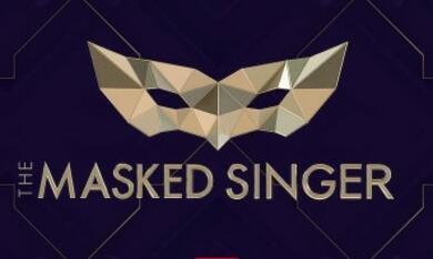 The Masked Singer , The Masked Singer  - Staffel 1, The Masked Singer  - Staffel 2, The Masked Singer  - Staffel 3 - Bild 1