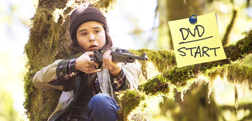 Into the Forest jetzt auf DVD und Blu-ray