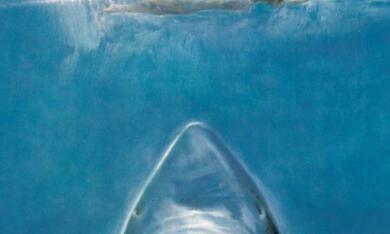 Der weiße Hai - Bild 11
