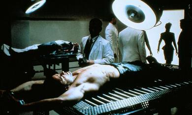 The Punisher mit Dolph Lundgren - Bild 2