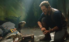 Jurassic World: Das gefallene Königreich mit Chris Pratt - Bild 11
