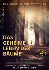 Das geheime Leben der Bäume - Poster