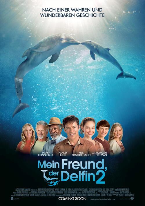 Mein Freund Der Delfin 2 Film 2014 Moviepilot De