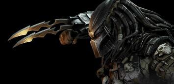Bild zu:  Der Predator ist zurück