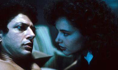 Die Fliege, Geena Davis mit Jeff Goldblum - Bild 7
