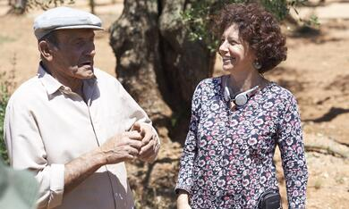 El Olivo - Der Olivenbaum mit Icíar Bollaín - Bild 2