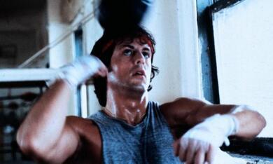 Rocky mit Sylvester Stallone - Bild 9