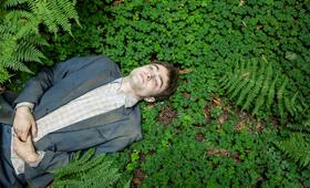 Swiss Army Man mit Daniel Radcliffe - Bild 8