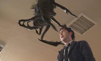 - Nur ein toter Käfer ist ein guter Käfer - Bild 5