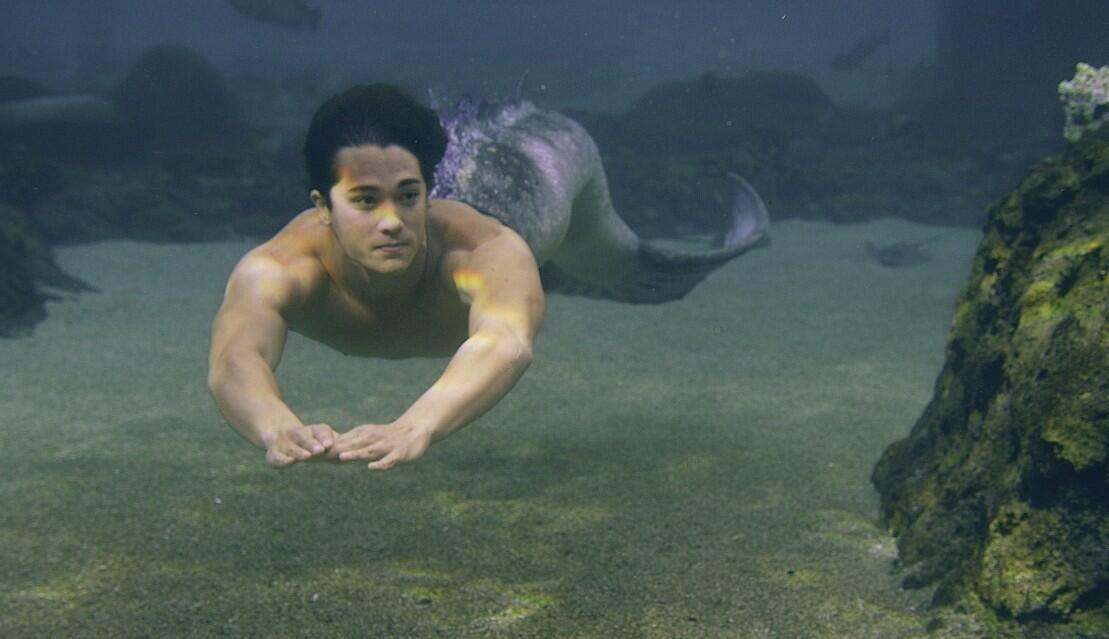 Mako Einfach Meerjungfrau Stream