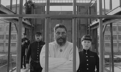 The French Dispatch mit Benicio del Toro und Léa Seydoux - Bild 2