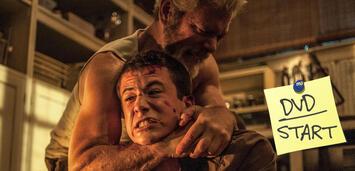 Bild zu:  Don't Breathe jetzt auf DVD und Blu-ray
