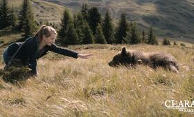 Clara und das Geheimnis der Bären - Bild 13