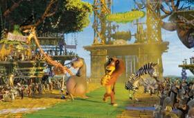 Madagascar 2 - Bild 11