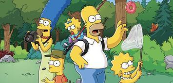 Bild zu:  Die Simpsons
