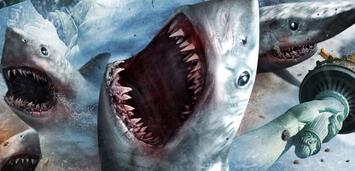 Bild zu:  Sharknado 5
