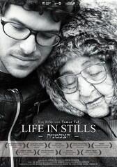 Life in Stills