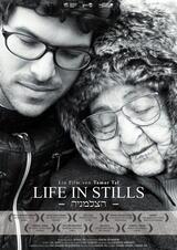 Life in Stills - Poster