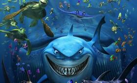 Findet Nemo - Bild 4