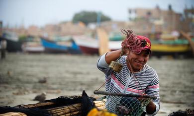 Ceviche, mein Lieblingsgericht aus Peru - Bild 12