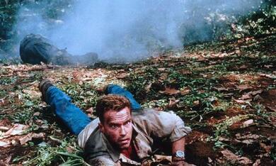 Collateral Damage mit Arnold Schwarzenegger - Bild 7