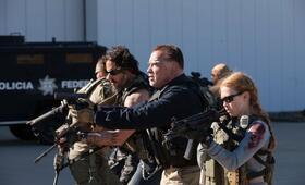 Arnold Schwarzenegger - Bild 258