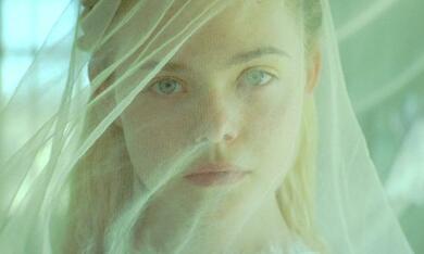 Young Ones mit Elle Fanning - Bild 9