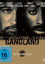 Gangland - Cops unter Beschuß Poster