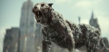 Zack Snyders neues Haustier: Ein Zombie-Tiger namens Valentine