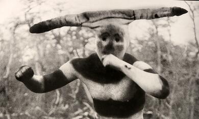 Der Perlmuttknopf - Bild 4