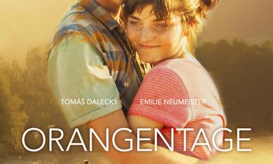 Orangentage - Bild 9