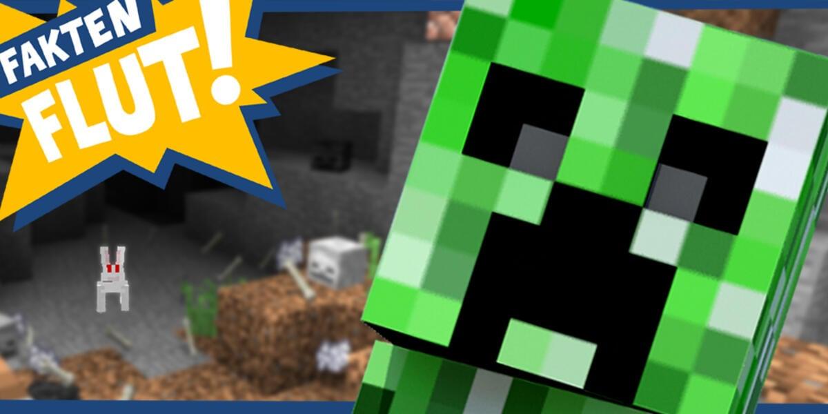 Buddeln Hacken Bauen Die Faktenflut Zu Minecraft News Moviepilotde - Minecraft spiele in echt