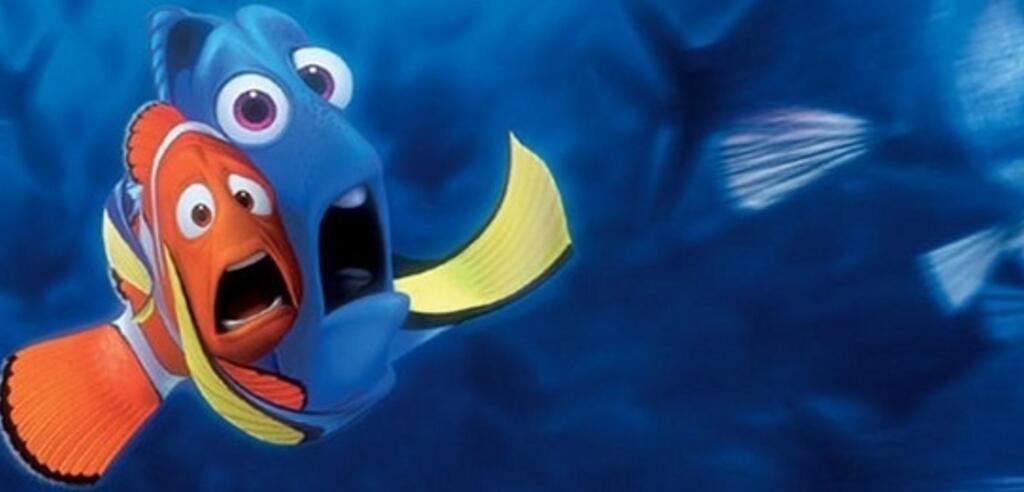 Nemo Und Dorie