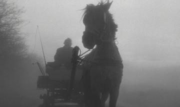 Das Turiner Pferd (Béla Tarr, 2011)