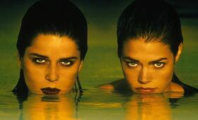 Wild Things mit Denise Richards - Bild 12